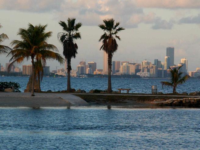 Silicon Beach, perché Miami è il nuovo paradiso (anche fiscale) per i lavoratori smart