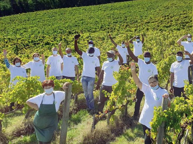 Il Sagrantino di Caprai e le vigne umbre dell'integrazione