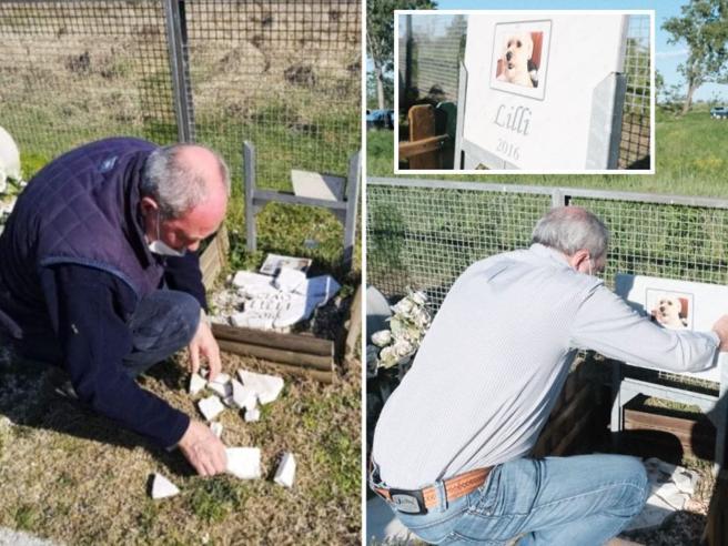 Alessandria: vandali nel cimitero degli animali, ora la cagnolina Lilli ha di nuovo la sua tomba