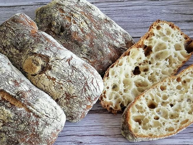 Il pane migliore d'Italia: la classifica dei panifici del Gambero Rosso