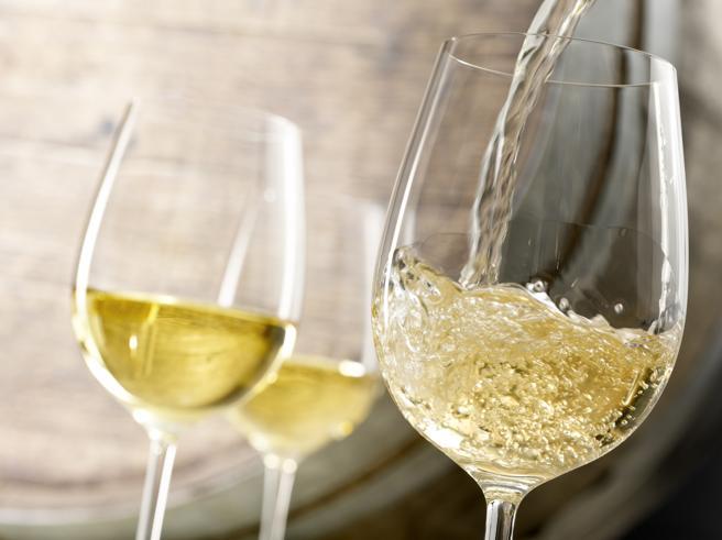 Sostenibilità, un green pass per il vino. Un primato italiano