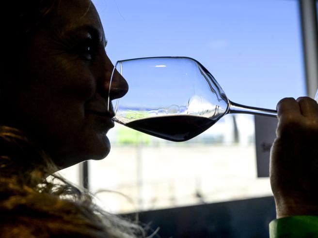 La scalata di Clessidra ai gruppi del vino. Ottaviano: «Secondi in Italia, ma saliremo»
