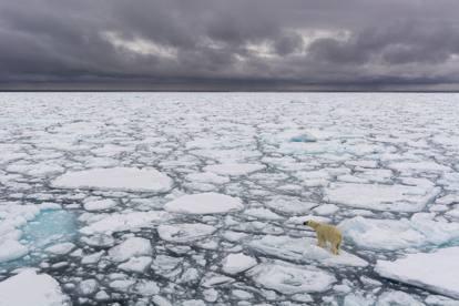 Effetto Clima, le immagini in mostra del fotografo Sergio Pitamitz