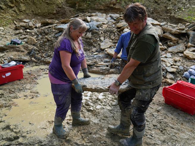 Coppia scopre migliaia di fossili da casa: «Abbiamo usato Google Earth»