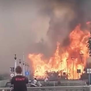 Pescara, le foto del maxi incendio nella Pineta Dannunziana