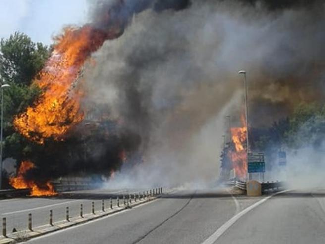 Pescara, maxi incendio distrugge la Riserva Dannunziana: ci sono feriti, evacuati a decine
