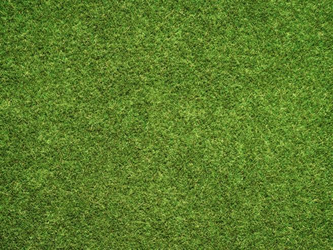 Verde, come il «green pass» che non è mai stato verde