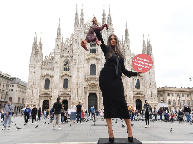 «Basta pellicce»: il flash mob di Peta con Rosita Celentano in piazza Duomo a Milano