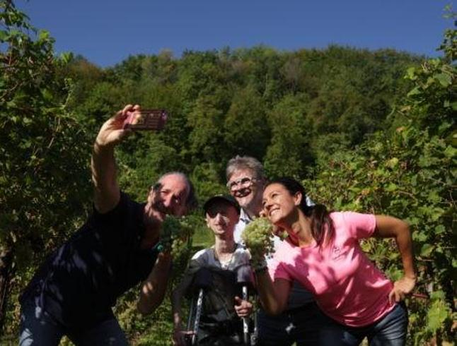 Vendemmia solidale: così la raccolta dell'uva aiuta i disabili