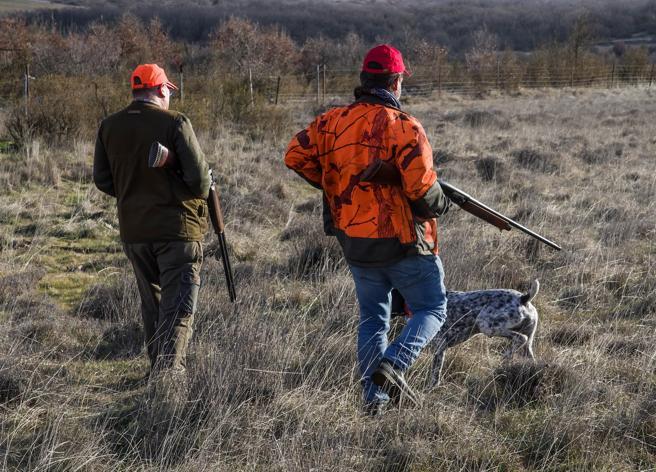 Referendum contro la caccia,  raggiunte (in extremis) le 500 mila firme: «Ne servono altre di sicurezza»