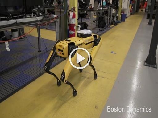 Spotmini il robot che sale e scende le scale corriere tv for Sedia elettrica che sale le scale