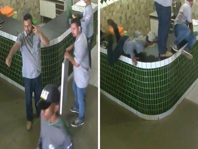 Il pitbull entra nel locale e gli operai fuggono terrorizzati. Ma ecco le vere intenzioni dell'animale