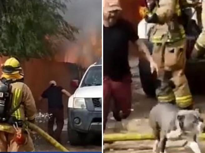 Uomo rischia la vita per salvare il cane dalla casa in fiamme