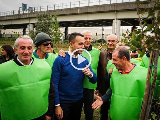 «Alberi per il futuro», Di Maio ne pianta uno a Casoria - Corriere TV