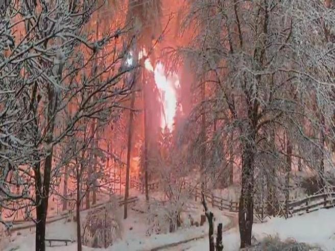 Val Pusteria: il «bosco in fiamme» per la caduta dei cavi elettrici