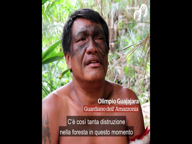 Amazzonia: il testamento di Paulino nel video di Survival E su 7 il reportage tra i Guardiani della foresta