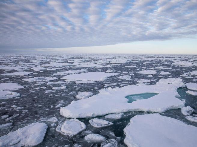 Artico, nuovo allarme: cala ancora, e tanto, il livello dei ghiacci marini Il video dalla nave di Greenpeace