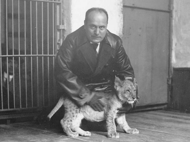 La malattia di Mussolini |«M. L'uomo della provvidenza»