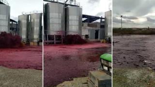 Silos danneggiato: in Spagna fuoriescono oltre 50.000 litri di vino