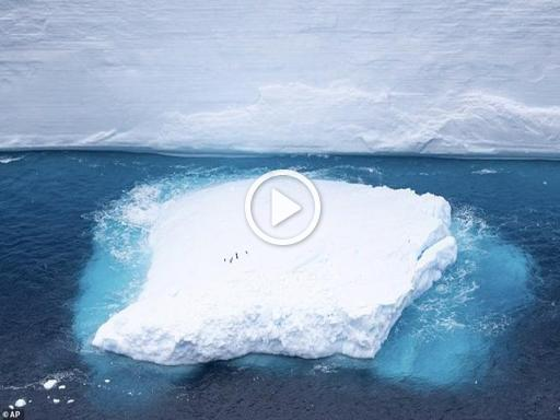 Antartico: le immagini aeree dell'iceberg che si è spezzato in due ed è in rotta di collisione con l'isola Georgia del sud