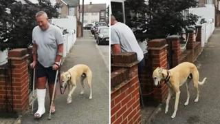 Billy, il cane che voleva zoppicare come il suo padrone