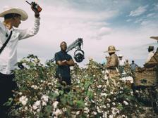 «The Underground Railroad», Barry Jenkins: «Vi mostro che cosa è stata l'America»