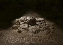 Neanderthal: la scoperta straordinaria
