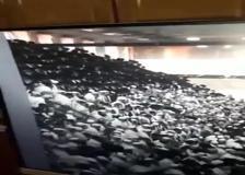 Israele, crolla tribuna in una sinagoga: numerosi feriti