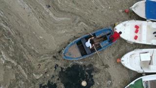 Coste turche invase dalla mucillagine, l'allarme degli ambientalisti