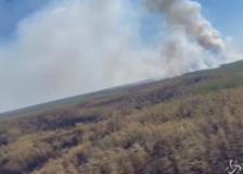 Russia, incendi in Siberia: coinvolti 550 chilometri quadrati