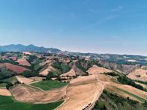 Dare valore alla terra: perché l'agroalimentare sostenibile è l'unico possibile