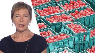 Pomodoro: come si distrugge l'eccellenza del Made in Italy