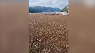 Maltempo, enorme quantità di detriti vicino alla riva a Como