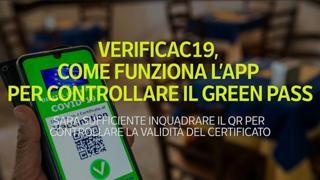 VerificaC19, come funziona l'app per controllare il Green Pass