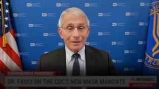 Usa, Fauci: «Se si contrae la variante Delta si può essere contagiosi anche se si è vaccinati»