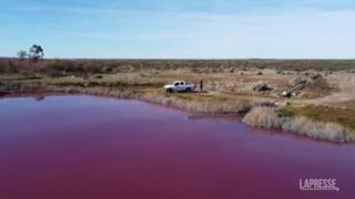 Patagonia, la laguna di Corfo si tinge di rosa (la colpa è dei rifiuti)