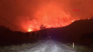 Incendi in Turchia, centinaia di roghi nella provincia di Mugla