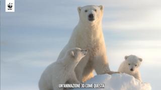 Emergenza climatica, il Wwf porta al Festival di Venezia il corto di Gabriele Muccino sugli orsi polari