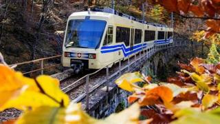 Riparte il treno del foliage: viaggio tra i colori dell'autunno