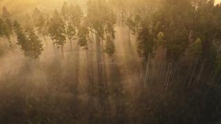 Coi suoi colori e la sua pace l'autunno fa innamorare: i bellissimi paesaggi della Moravia settentrionale