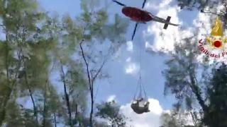 Spoleto, vigili del fuoco salvano una mucca trasportandola in elicottero