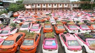 Bangkok, il cimitero dei taxi prende vita: piccoli orti sui tetti delle auto