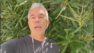 Cannabis legale, Perduca: «Superate le 500 mila firme, andiamo in Cassazione»
