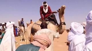 La grande corsa di cammelli del Sahara disputata in Niger