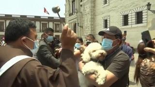 Perù, benedizioni per cani e gatti a Lima