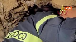 Cagnolino resta intrappolato tra le rocce nel palermitano, il video del salvataggio