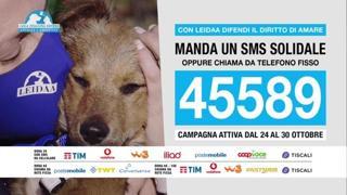 «L'amore è un diritto per tutti», l'sms solidale in aiuto degli animali