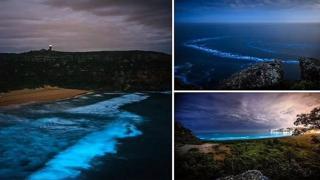 Sydney: il mare si illumina con le incredibili onde blu bioluminescenti