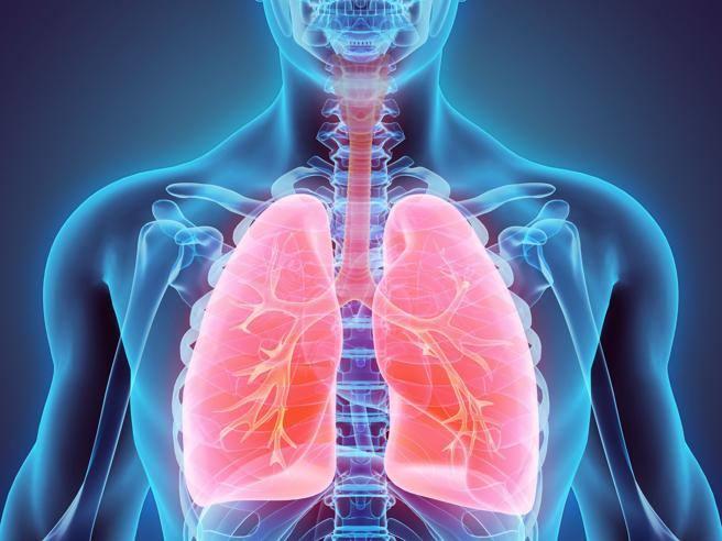 Среднее артериальное давление но - Sindrome di ipertensione portale