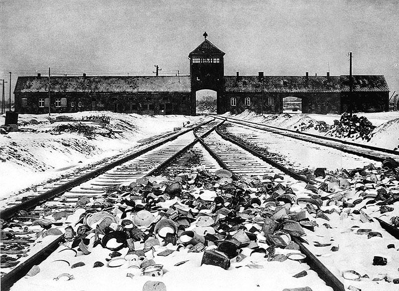 Noi Sopravvissute Ad Auschwitz Perche Scambiate Per Gemelle